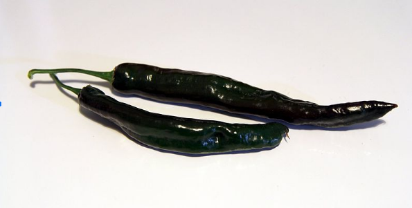 Pasilla Chile Peppers: The Ultimate Guide